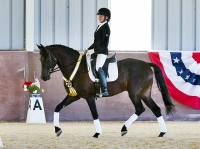 Dressage at the Gaits - July 4, 5 & 6, 2014