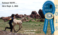 2015 Merriewold Morgans International Photo Contest