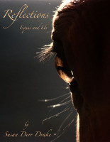 Reflections, Equus and Us